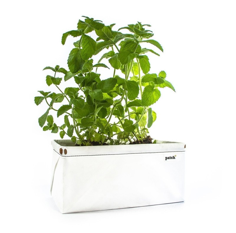 1_120918_patch_herb_planter_soil_seeds_2