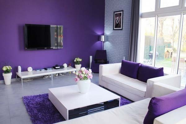 purple-living-room.jpg